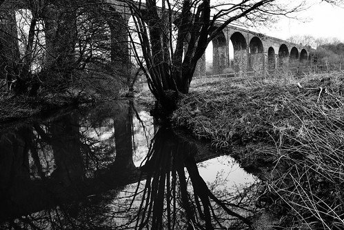 pensford somerset england uk gb greatbritain outdoors sony a6000 viaduct railway trees reflection blackandwhite blackwhite bw monochrome grass tunnel bridge
