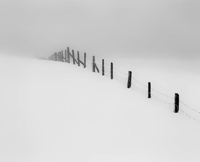 Snow and Fog.jpg