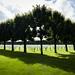 Meuse-Argonne American Cemetery, Verdun, France by Maya Lucchitta