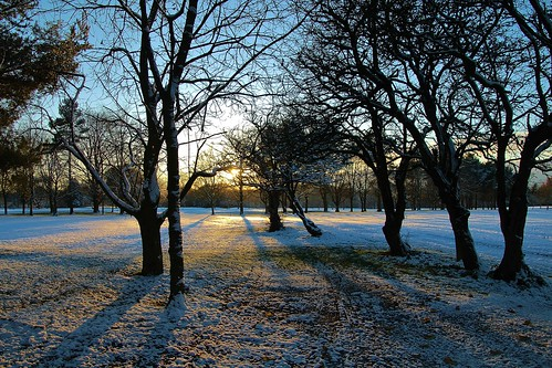 europe england cheshire outdoor nature beauty blueskies sunlight shadows silhouettes sunset simplysuperb winter snow