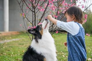 20180304-227親子兒童寵物 rumax 攝影師 | by RuMax 2010