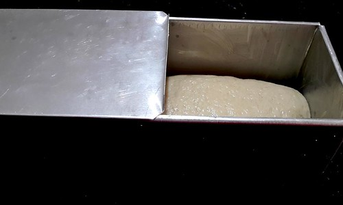 50 50 bread Shaped dough