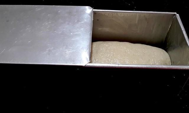 50 50 bread Shaped dough