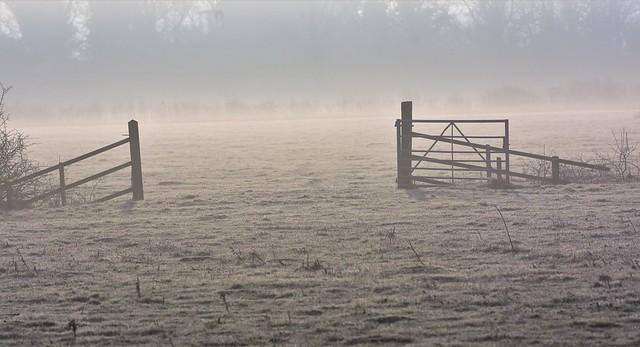 Mist through the gate.