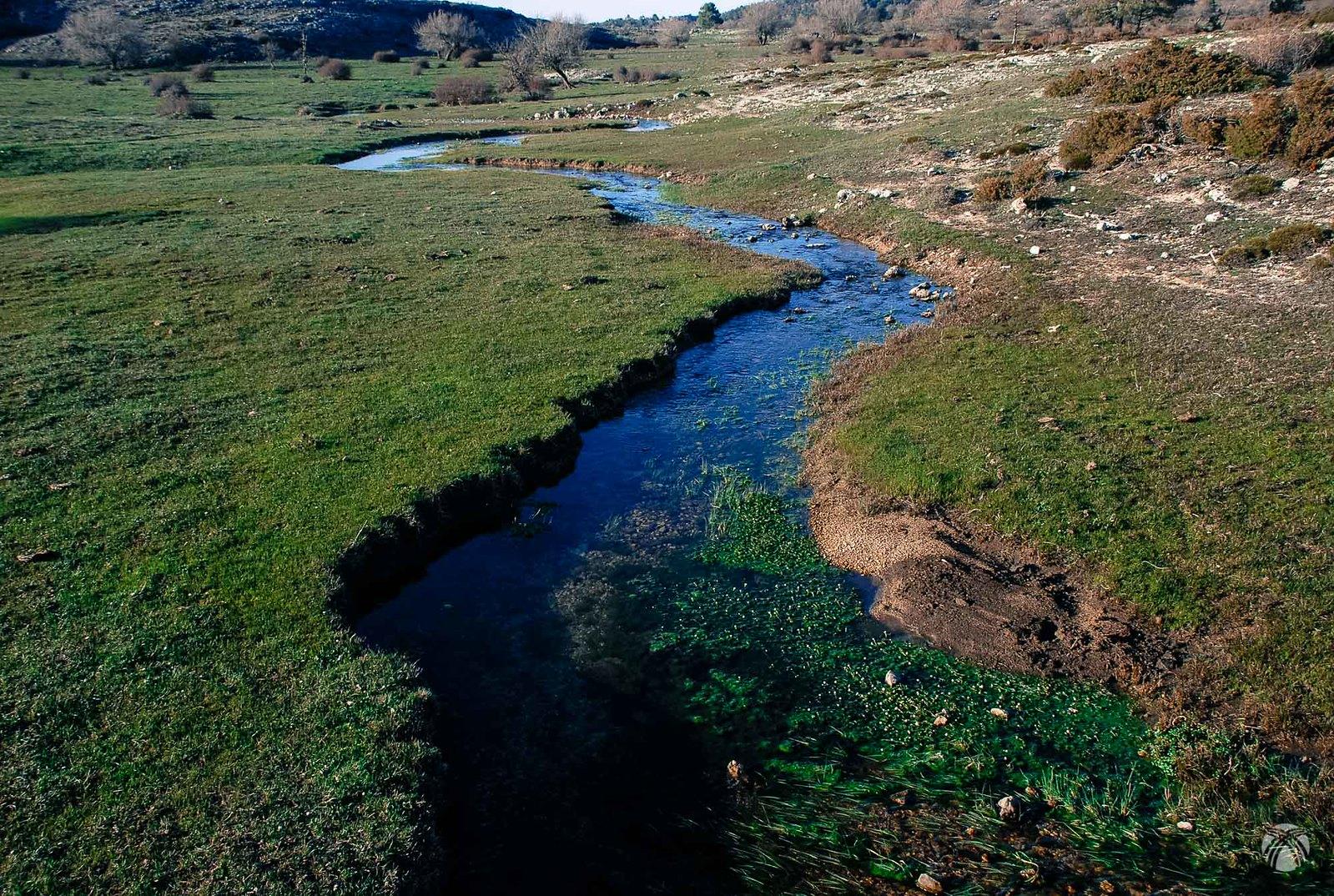 Las aguas manan de forma espontánea: el Calar está repleto