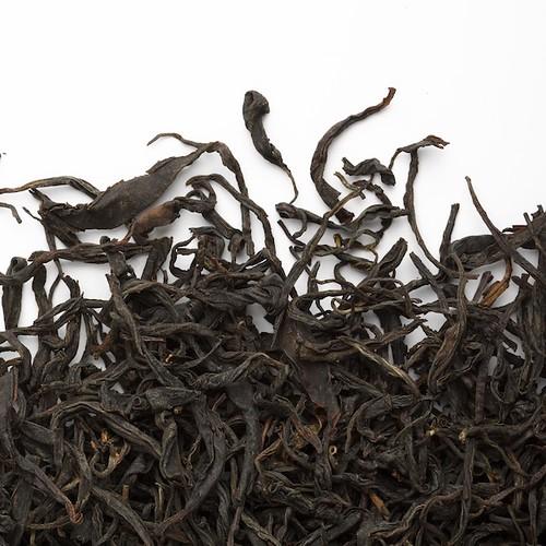 Tea Studio - Nilgiri Coonoor