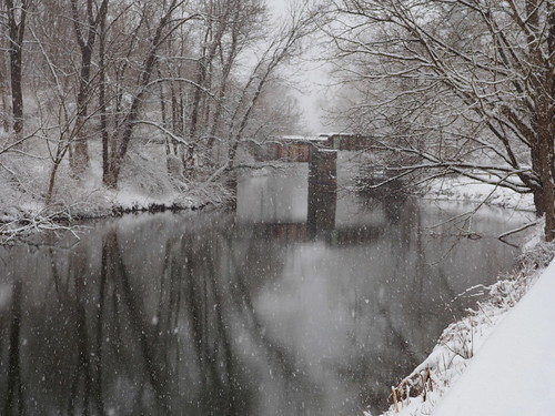 Winter canal reflections