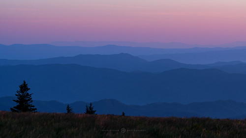 2017 metaboneseftoeivt sonyilce7rm2a7rii canonef135mmf2lusm reallyrightstuff ba72l bh55 rrspcl01 tvc33 landscapephotography mountains nikcollectionbygoogle sunrise dawn thebluehour copyright2017 travisrhoadsphotography northcarolina roanmountain appalachiantrail expeditionroan2017 roanmountainstatepark roundbald