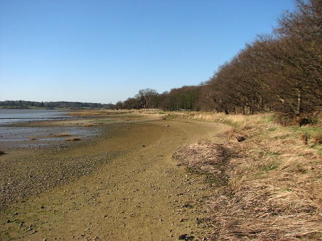 The River Orwell near Nacton