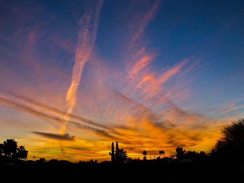 sunset arizona sky skies contrails clouds color colors cactus silhouette