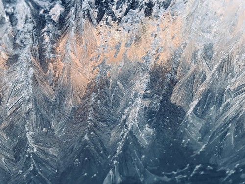 Frost Feathers | by Cat Sidh