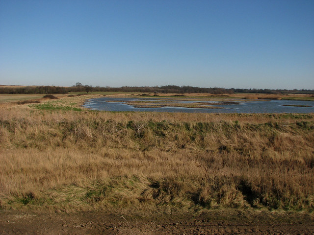 Trimley Marshes