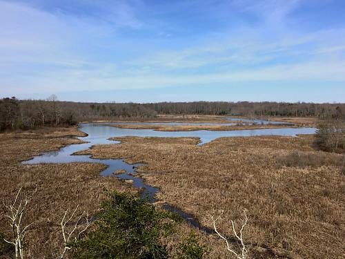 merklewildlifesanctuary croom maryland princegeorgesco wetlands patuxentriver