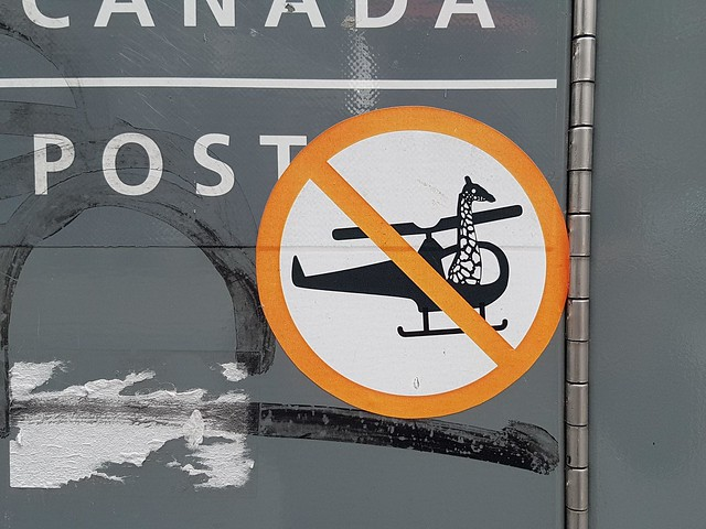 No Giraffes in Helicopters