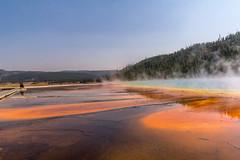 Yellowstone-329