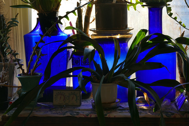 living room window with orchid &  cobalt glass
