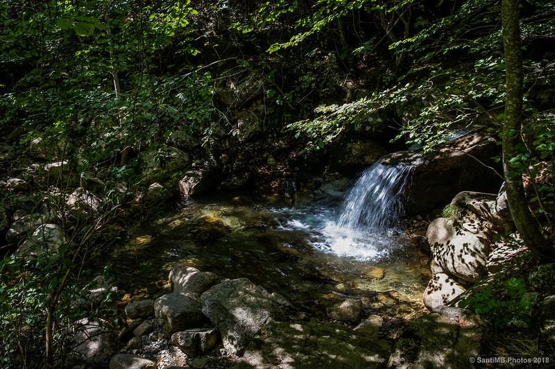 Barranc de la Salenca