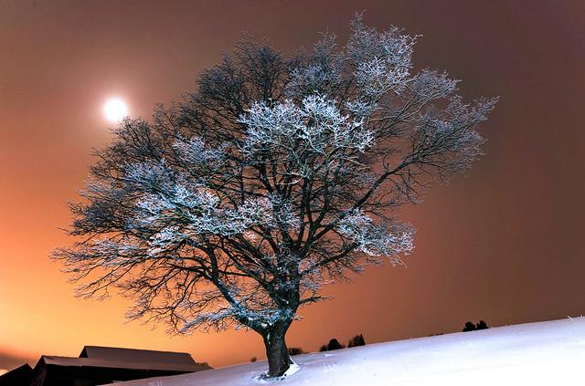 Nuit glaciale.