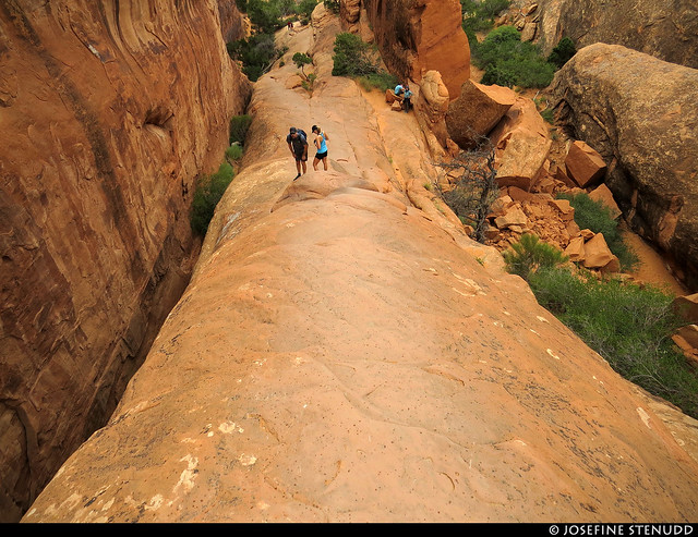 20160822_31 Down the sandstone fin | Arches National Park, Utah