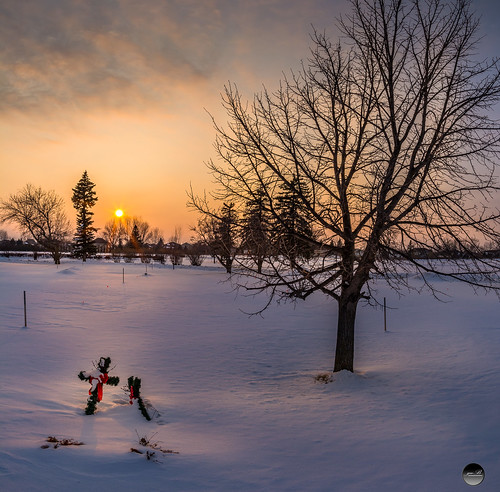 winter cemetery cold fargo north dakota ice landscape rokinon16mm