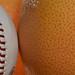 Spring Training - Florida Grapefruit League by cooperexp