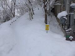 冬はビューポイントへの階段も積雪しているので(除雪されてはいるが追いつかない)、長靴で行く方が歩きやすい