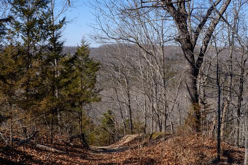 hiking fujifilmxe3 gsa busiekstateforestandwildlifearea busieksilvertrail ozark missouri unitedstates us