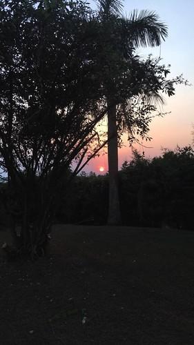 sunset   by FullSoul.