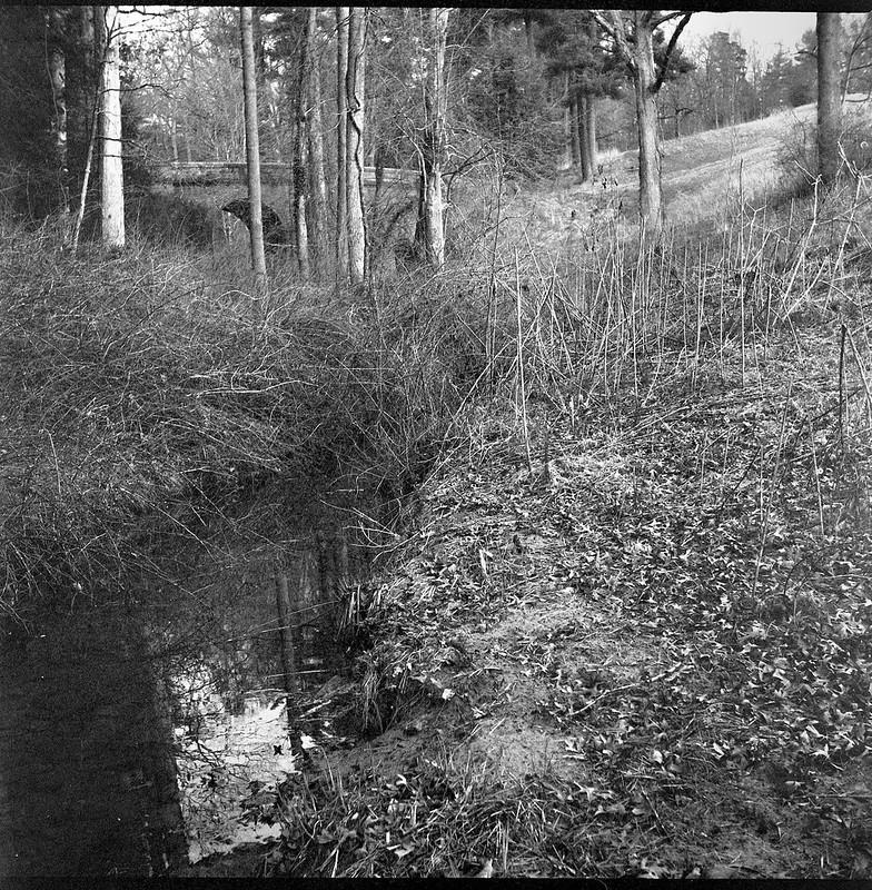 angular reflection, stream, trees, bridge, rolling terrain, Biltmore Estate, Asheville, NC, Ricoh Dia M, Arista.Edu 400, Ilford Ilfosol 3, 3.6.18