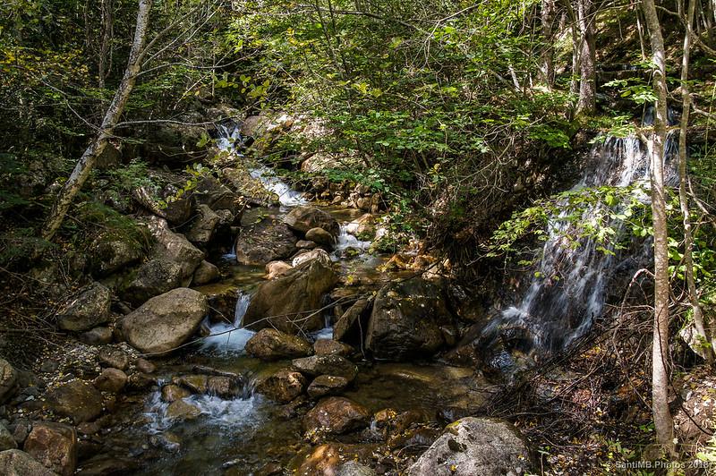 El Barranco de la Salenca cerca de la Font del Ferro