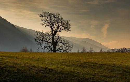 morning rays lonetree lakedistrict cumbria winter february dawn hills shaftsoflight stjohnsinthevale