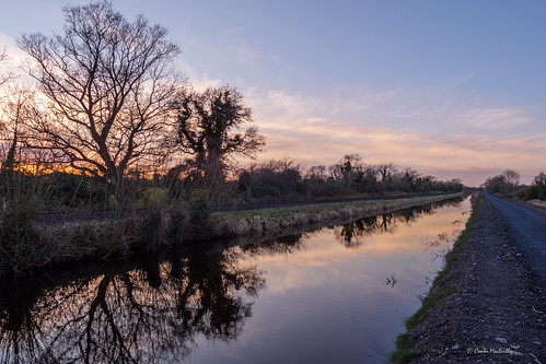 royal canal royalcanal greenway royalcanalgreenway waterways ireland waterwaysireland kilcock kildare sunset lgbtphotographers