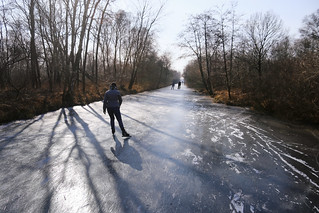 Skating along the swamp forests of the Weerribben | by B℮n