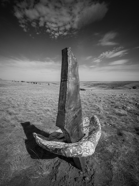 palmer sculpture biennial 2018 - 0524 - deb sleeman [mono]