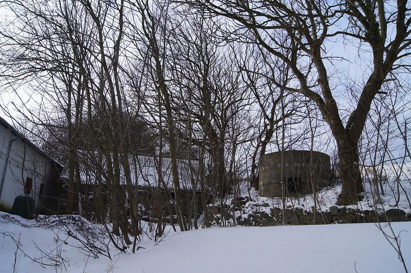 Moedding-i-frostvejr