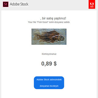 AdobeFotolia-19Mart2018-Olympus PEN E-PL3 + 14-42 II R kit lens   by Ciddi Biri