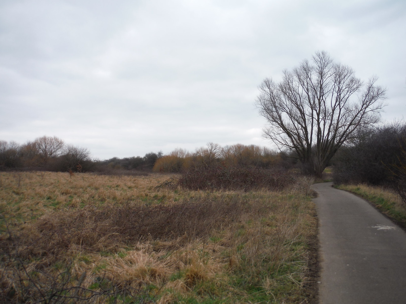 Beam Valley Country Park SWC Short Walk 33 - Dagenham Parks, Rivers and Ponds