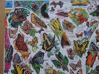 White Mountain Puzzles 1000 World's Most Beautiful Butterflies   by Olcia Ola