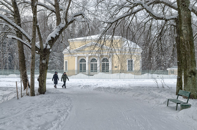 An alley leading to Round Hall in Pavlovsk park.