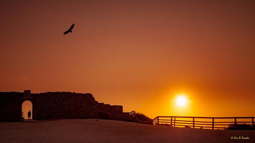 201407 algarve arrifana berge bord caldasdemonchique europe falaise littoral naturel paysage plage portugal rive aljezur faro pt