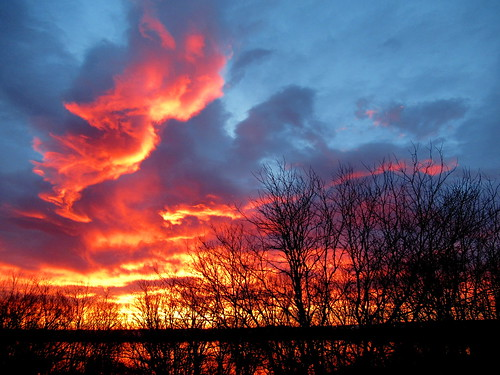 colorado boulder clouds sky blue orange red morning sunrise water lake trees branches landscape haydenlake