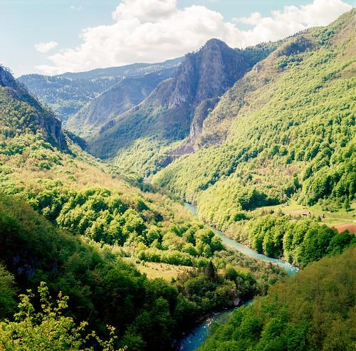 Kanjon Tare | by HolmisticWalker