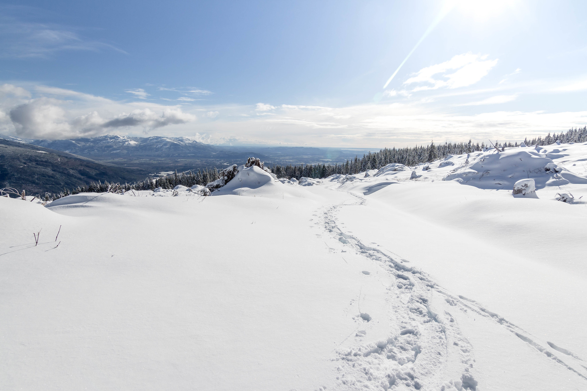 Making tracks on Anderson Mountain