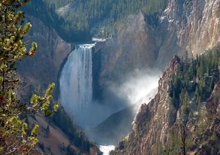 Yellowstone lower falls 1 | by fieldsbh