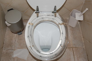Surprising Barbed Wire Toilet Seat Bling Bling 06 Flickr Creativecarmelina Interior Chair Design Creativecarmelinacom