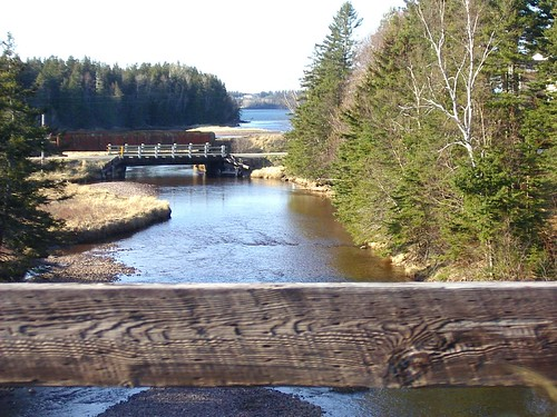 bridge trees sky white color freeassociation spring scenery sunny bluesky evergreen april capebreton takenwhiledriving ponds bigcalm ontheroad nuanc brightsun roadstories whitebridge stopoffs localscenery