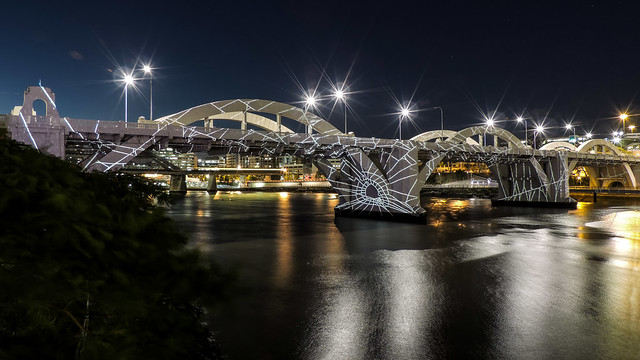 BRISBANE 2017 - SPIDER BRIDGE   (#105 in series) - Brisbane QLD AU  18Jan2017 sRGB web
