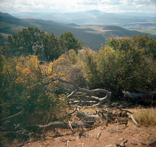 blackcanyon gunnison view colorado film 120 portra diana f
