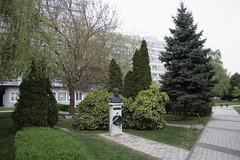 Széchenyi István University