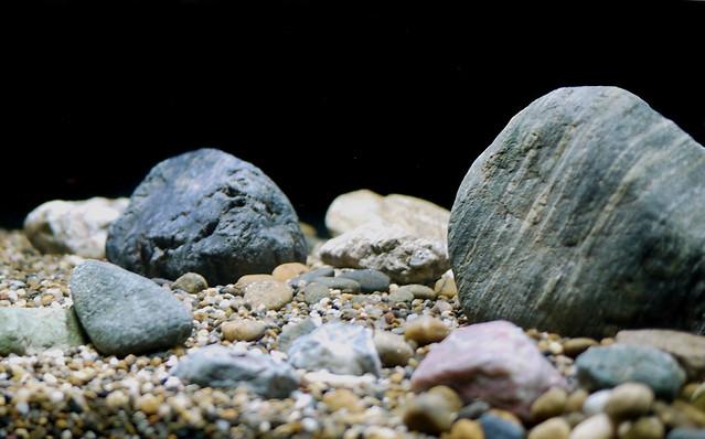 1600x660 Aquarium Substrate